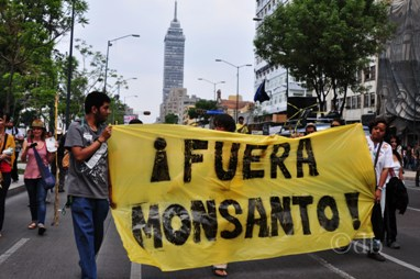 Monsanto, ganancias contra salud