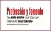 Protección y fomento del maíz nativo vs producción masiva del maíz híbrido