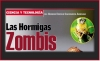CIENCIA Y TECNOLOGÍA/ Las Hormigas Zombis