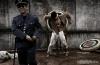 EU: violación a  derechos humanos
