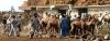 SOMALIA: NACIÓN QUE SE DERRUMBA ENTRE LA GUERRA Y EL HAMBRE